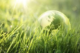 Educare i bambini al rispetto per l'ambiente significa dar loro le chiavi del futuro
